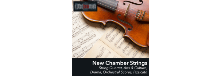 New Chamber Strings ©Motion-Focus-Music
